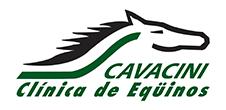 Cavacini